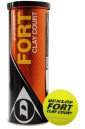 Fort Clay Court